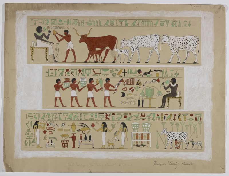 Paroi de la tombe de Kemsit, épouse de Montouhotep Nebhépetrê © MAH, photo : B. Jacot-Descombes (archives Édouard et Marguerite Naville)